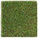 Handtuftad matta Leo, färg Green Apple.