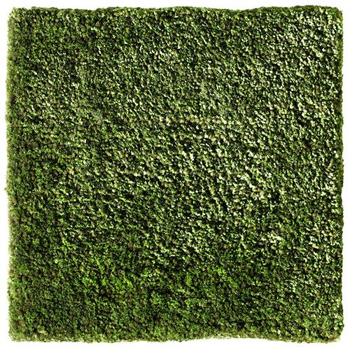 Handtuftad matta Vega Astro Mix, färg Herbal Green grön.