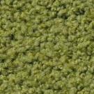 Matta Elara Exclusive 1009 färg 4E65 grön.