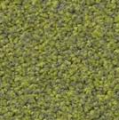 Matta Frisea Superior 1012 färg 4G38 grön.